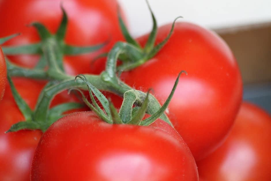 sauce aurore tomates