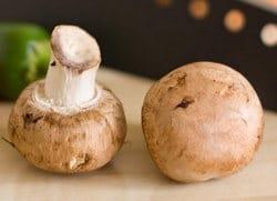 sauce normande champignons