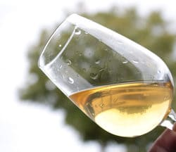 sauce vin blanc